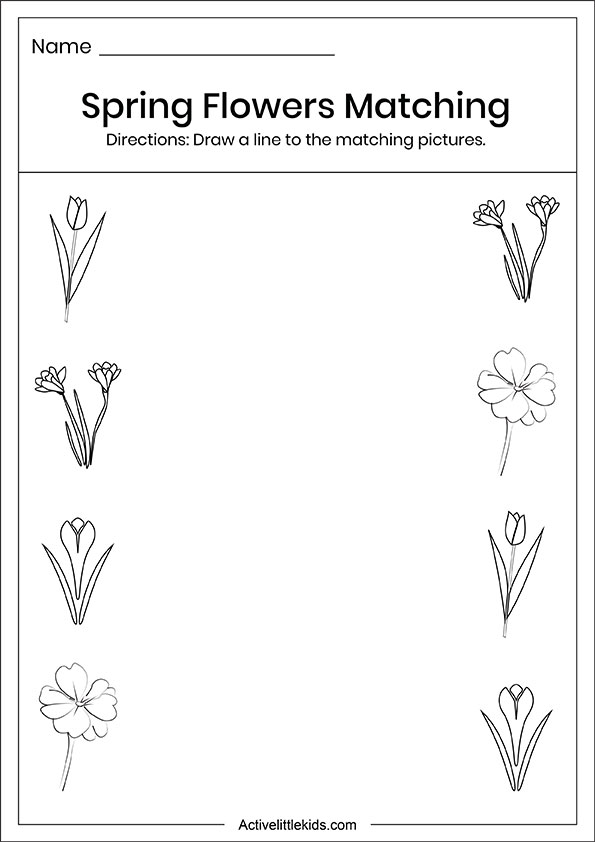 Spring flowers matching worksheets