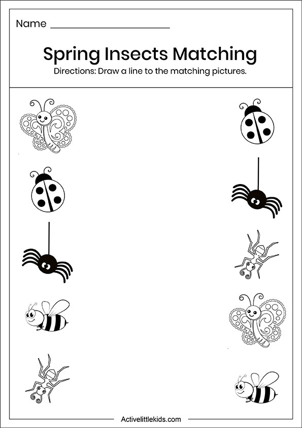 Spring insects matching worksheets